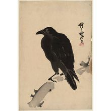 Kawanabe Kyosai: Black Crow - Museum of Fine Arts