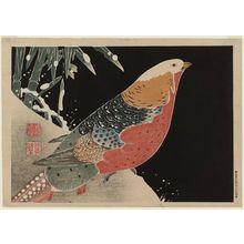 Jakuchu: Golden Pheasant - Museum of Fine Arts