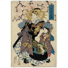 Teisai Senchô: Nagato of the Owariya, from an untitled series of courtesans under cherry blossoms - Museum of Fine Arts