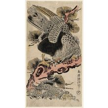 Torii Kiyonobu II: Eagle and Monkey - Museum of Fine Arts