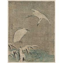 Suzuki Harunobu: Herons in Snow - Museum of Fine Arts