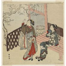 Suzuki Harunobu: Two Young Women Admiring Plum Blossoms - Museum of Fine Arts