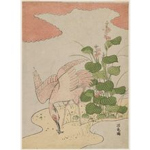 Isoda Koryusai: Egret and Mizu-aoi - Museum of Fine Arts