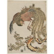 Isoda Koryusai: Phoenix and Paulownia Tree - Museum of Fine Arts