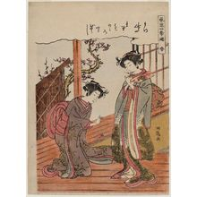 Isoda Koryusai: Spring (Haru), from the series Fashionable Amusements of the Four Seasons (Fûryû shiki asobi) - Museum of Fine Arts