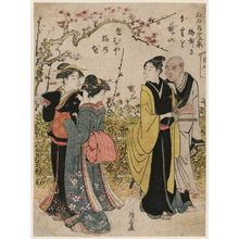 Torii Kiyonaga: The Plum Garden (Umeyashiki), from the series Collection of Famous Places in Edo (Edo meisho shû) - Museum of Fine Arts