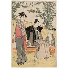 Torii Kiyonaga: Viewing Bush Clover, from the series Current Manners in Eastern Brocade (Fûzoku Azuma no nishiki) - Museum of Fine Arts