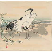 Toan: Two cranes by the shore - Museum of Fine Arts
