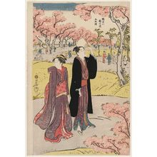 Torii Kiyonaga: Cherry Trees on the Banks of the Sumida River, a Pentaptych (Sumidagawa sakura no kei, gomai tsuzuki) - Museum of Fine Arts