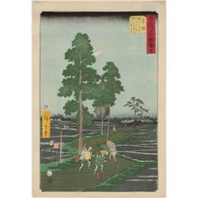 Utagawa Hiroshige: No. 37, Akasaka: On the Nawate Road, Yajirôbei Takes Kitahachi for a Fox and Beats Him (Akasaka, Nawatemichi ni te Yajirôbei Kitahachi o kitsune to omohite chôchaku suru), from Famous Sights of the 53 Stations (Gojûsan tsugi meisho zue) (Vertical Tôkaidô) - Museum of Fine Arts