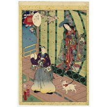 Utagawa Kunisada II: No. 36, Kashiwagi, from the series Lady Murasaki's Genji Cards (Murasaki Shikibu Genji karuta) - Museum of Fine Arts