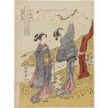 Katsukawa Shunsho: Poem by Ono no Komachi, from the series Rokkasen (Six Poetic Immortals) - Museum of Fine Arts