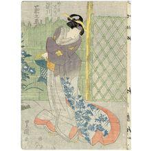 歌川豊国: Actor Segawa Kikunojô - ボストン美術館