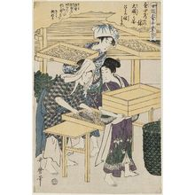 Kitagawa Utamaro: No. 4 from the series Women Engaged in the Sericulture Industry (Joshoku kaiko tewaza-gusa) - Museum of Fine Arts