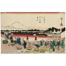 Utagawa Hiroshige: Fish Market at Nihonbashi Bridge (Nihonbashi uoichi), from the series Famous Places in the Eastern Capital (Tôto meisho) - Museum of Fine Arts