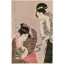Kitagawa Utamaro: Snake and Boar, from the series Zodiac Pairs in the Floating World (Ukiyo nanatsume awase) - Museum of Fine Arts