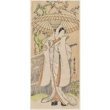 一筆斉文調: Actor Segawa Kikunojô II as the Snow Woman (Yuki onna), actually Tatsu-hime - ボストン美術館