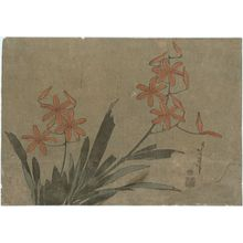 葛飾北斎: Orange Orchids, from an untitled series known as Large Flowers - ボストン美術館
