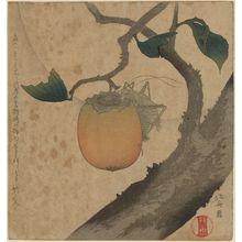Katsushika Hokusai: Grasshopper and Persimmon - Museum of Fine Arts