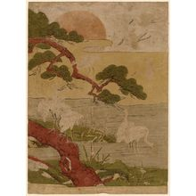 Isoda Koryusai: White Herons, Pine Tree, and Rising Sun - Museum of Fine Arts