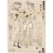 Hosoda Eishi: Plovers (Chidori), from the series Twelve Assorted Birds (Shochô jûnikin) - Museum of Fine Arts