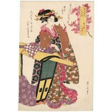 菊川英山: Kayoi Komachi, from the series Fashionable Beauties as the Seven Komachi (Fûryû bijin nana Komachi) - ボストン美術館