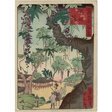 Utagawa Yoshitaki: Wisteria in Noda (Noda fuji), from the series One Hundred Views of Osaka (Naniwa hyakkei) - Museum of Fine Arts
