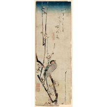 Utagawa Hiroshige: Red-cheeked Bird and Red Plum Blossoms - Museum of Fine Arts