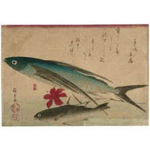 Utagawa Hiroshige: Flying Fish, Ishimochi, and Lily, from an untitled series known as Large Fish - Museum of Fine Arts
