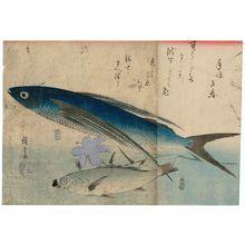 歌川広重: Flying Fish, Ishimochi, and Lily, from an untitled series known as Large Fish - ボストン美術館