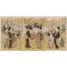 Utagawa Toyohiro: The Third Month, a Triptych (Sangatsu, sanmaitsuzuki), from the series Twelve Months by Two Artists, Toyokuni and Toyohiro (Toyokuni Toyohiro ryôga jûnikô) - Museum of Fine Arts