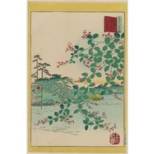 二歌川広重: Bush Clover at the Kameido River in Tokyo (Tôkyô Kameido-gawa hagi), from the series Thirty-six Selected Flowers (Sanjûrokkasen) - ボストン美術館