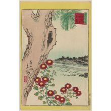 Utagawa Hiroshige II: Wild Chrysanthemums at Yanagishima in Tokyo (Tôkyô Yanagishima nogiku), from the series Thirty-six Selected Flowers (Sanjûrokkasen) - Museum of Fine Arts