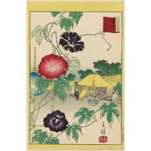 Utagawa Hiroshige II: Morning Glories at Iriya in the Eastern Capital (Tôto Iriya asagao), from the series Thirty-six Selected Flowers (Sanjûrokkasen) - Museum of Fine Arts
