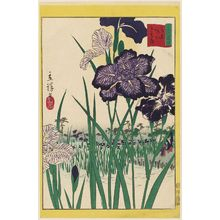 Utagawa Hiroshige II: Irises at Horikiri in Tokyo (Tôkyô Horikiri hana shôbu), from the series Thirty-six Selected Flowers (Sanjûrokkasen) - Museum of Fine Arts