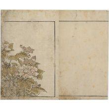 北尾重政: Bellflowers and Peonies, floral endpaper from the book Mirror of Beautiful Women of the Green Houses (Seirô bijin awase sugata kagami) - ボストン美術館