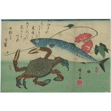 Utagawa Hiroshige: Mackerel, Crab, and Morning Glory, from an untitled series known as Large Fish - Museum of Fine Arts