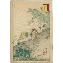 Nakayama Sûgakudô: No. 7 from the series Forty-eight Hawks Drawn from Life (Shô utsushi yonjû-hachi taka) - ボストン美術館