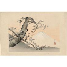 Ogata Gekko: Monkeys and Mount Fuji - Museum of Fine Arts