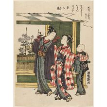 磯田湖龍齋: The Ninth Month (Nagatsuki), from the series Fashionable Flowers of the Twelve Months (Fûryû jûniki hana) - ボストン美術館