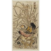 Nishimura Shigenaga: Mandarin Ducks, Iris, and Arrowheads - Museum of Fine Arts