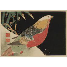 伊藤若冲: Golden pheasant in snow - ボストン美術館
