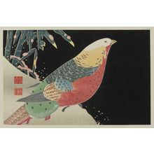 Jakuchu: Golden Pheasant and Bamboo in Snow - Museum of Fine Arts