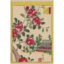 Utagawa Hiroshige II: Camellia at Ueno Shimotera in the Eastern Capital (Tôto Ueno Shimotera tsubaki), from the series Thirty-six Selected Flowers (Sanjûrokkasen) - Museum of Fine Arts