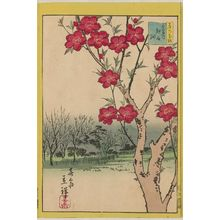 Utagawa Hiroshige II: Peach Blossoms at Koshigaya in the Eastern Capital (Tôto Koshigaya momo), from the series Thirty-six Selected Flowers (Sanjûrokkasen) - Museum of Fine Arts