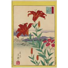 Utagawa Hiroshige II: Lilies at Senju in the Eastern Capital (Tôto Senju yuri), from the series Thirty-six Selected Flowers (Sanjûrokkasen) - Museum of Fine Arts