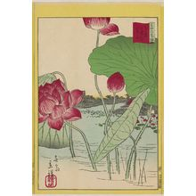 Utagawa Hiroshige II: Lotuses at Shinobazu Pond in Tokyo (Tôkyô Shinobazu ike renge), from the series Thirty-six Selected Flowers (Sanjûrokkasen) - Museum of Fine Arts