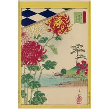 Utagawa Hiroshige II: Chrysanthemums at Somei in Tokyo (Tôkyô Somei kiku), from the series Thirty-six Selected Flowers (Sanjûrokkasen) - Museum of Fine Arts