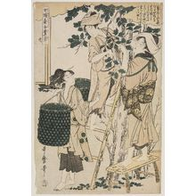 Kitagawa Utamaro: No. 2 from the series Women Engaged in the Sericulture Industry (Joshoku kaiko tewaza-gusa) - Museum of Fine Arts