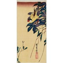 Utagawa Hiroshige: Finch and Clematis - Museum of Fine Arts